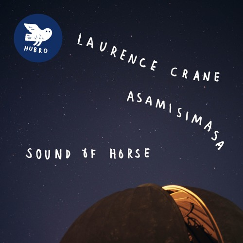 Laurence Crane/asamisimasa - Sound Of Horse VI. Luminous And Serene