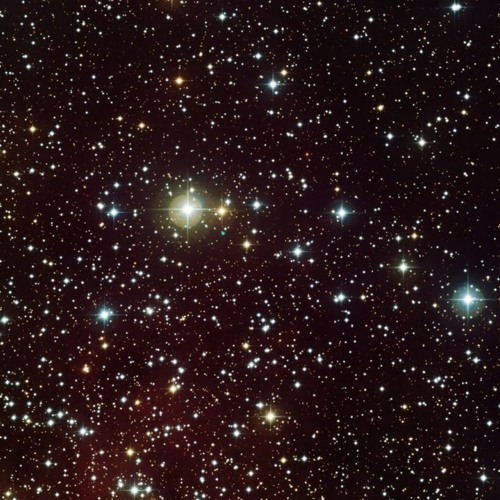 1000 Sterne sind ein Dom
