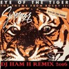 Survivor Eye Of The Tiger Dj Ham H Remix 2016 Mp3