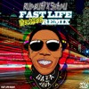 RUDBUAY X SHADU - FAST LIFE (VYBZ REMIX) mp3