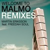 Martin Eriksson feat. Freedah Soul - Welcome To Malmo (Danny Thorn Remix)
