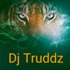 Marshvll - The Vibe ft. Young Fusion  (DJ Truddz Re-work)