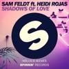 Sam Feldt ft. Heidi Rojas - Shadows of Love (MILOUE Remix)