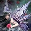 Chaos - Fairy Story