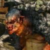 Friendly Troll (Witcher Video Game)