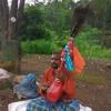 Teen Thariya Tambura