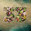 05. Give U