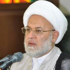 من الذي يحدد معيار اساءة الشعائر الحسينية للدين - الشيخ جلال الدين الصغير