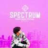 Spectrum Dance Music Festival 2016 DJ ASTER