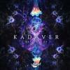 KADAVER - BACTERIA (VOKT Remix) [OUT NOW]