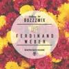 Buzzzmix Vol. 34 - Ferdinand Weber