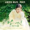 Baek A Yeon - A Lot Like Love [Moon Lovers: Scarlet Heart Ryeo OST] (cover)