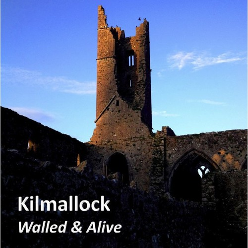Community Portrait: Kilmallock Walled & Alive