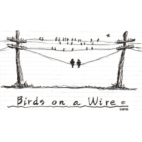 Birds On A Wire Ep. 47 - Jordan White Founder & Executive Director of Two Bear Air