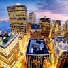 Manhattan | Alpacas cover
