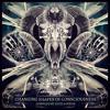 Beatfarmer - The Ritual (Original Mix)