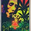 Sublime Smoke Two Joints Bob Marley Mashup Remix