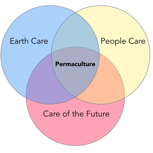 Episode 46 Introduction To The Permaculture Student 2, a Reading By Matt Powers