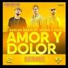CARLOS BAUTE FEAT. ALEXIS Y FIDO  - AMOR Y DOLOR REMIX (CHICHO DJ)