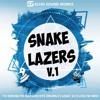 Snake Lazers V.1 - Serum & Massive Presets