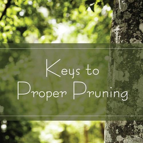 Keys to Proper Pruning