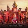 Tomorrowland Belgium 2016 After Album Cover