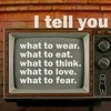 TV = M.E.D.I.A: MULTI-ETHNIC DESTRUCTION IN AMERICA BUILDING BLOCKS OF THE MATRIX OF FEAR