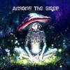 Vortek's - Among The Sleep