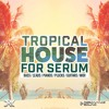 Tropical House For Serum Free Edit (FREE Samples & Presets)