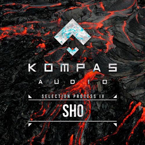 SHO - Selection Process 4