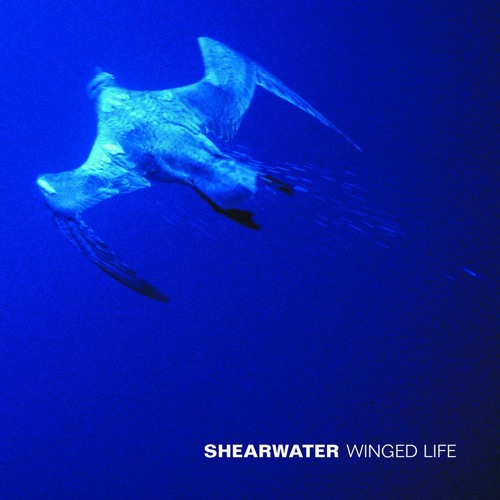 Shearwater - The Set Table