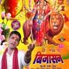 तेरी कृपा बनी रहे  Teri Kripa Bani Rahe   Bhenswa Mata   Bijasan Mata    Bhenswa Wali   Mohan Jadu