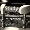 Song 40 - study for microtone guitar