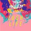 Zara Larsson - Lush Life (Jove Remix) **Skip to 30 sec**