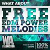 FREE EDM Power Melodies [24 Unique KSHMR / R3hab / Headhunterz Style Melody Packs]