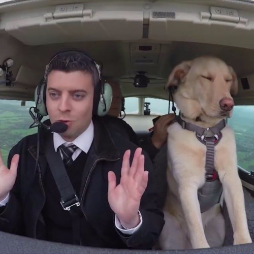 Milo Stewart and Other News: Pilot Part 5