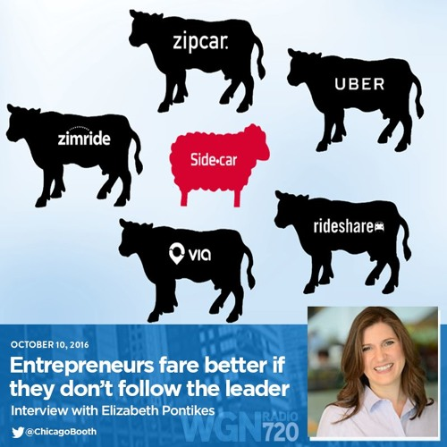 Entrepreneurs fare better if  they don't follow the leader