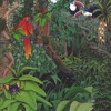 Lush Colors Deep Into The Jungle -- 10.10.16 mp3