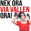 Via Vallen - Suket Teki (OM Sera Live) mp3