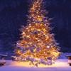 M. P. Heller - Joy Of Christmas - Saxophone Quartet