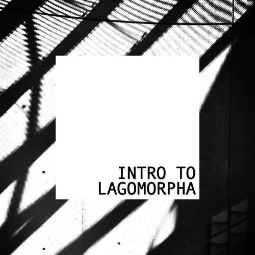 Intro to Lagomorpha