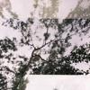 Download 3 - Broken Bones Mp3
