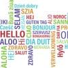 Kollegengespräch | Sina | Fremdsprachen