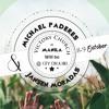 08-10-16 - Peru - Michael Paderes & Janssen Morados - Leadership