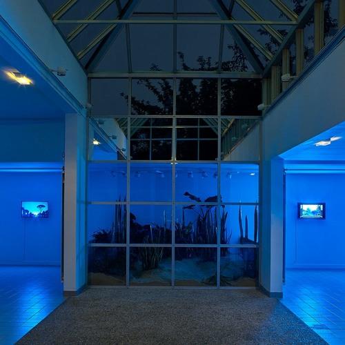Centre d'Art Contemporain Chanot