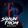 Tinie Tempah Feat Zara Larsson - Girls Like (Shaun Thom Bootleg) - HIT BUY 4 FREE DL
