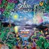 Selva - Compilation - FYC 59th Grammy Best Latin Pop Album