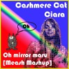 Cashmere Cat x Ciara - Oh Mirror Maru [Meash Mashup]  (Free DL)