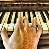 Oum Kolthoum - Enta Omri (Piano intro) انت عمري - أم كلثوم