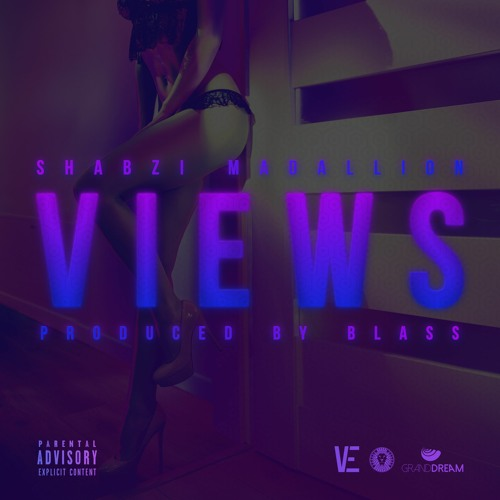 ShabZi Madallion - VIEWS [Prod by Blass]